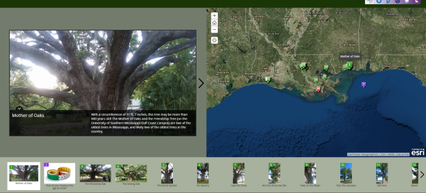 Web Mapping Application: Living Ancestors